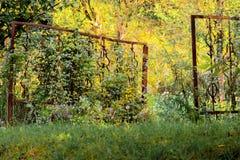 Välkomnande till naturen Arkivfoton