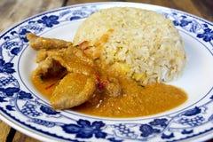 Välsmakande curry med grisköttPA Nang Royaltyfri Bild