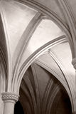 välva sig gotiskt Royaltyfria Bilder