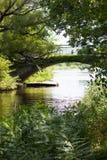 Välvd bro över grön flodstrand arkivfoto