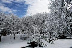 Välvd bro i vinter Fotografering för Bildbyråer