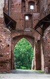 Välvd dörr på den Tartu domkyrkan royaltyfria foton