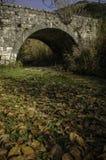 Välvd stenbro i land Arkivbilder