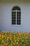 Välvt fönster i den vita väggen med blommor Arkivbilder