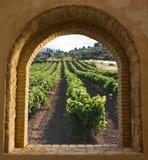 välvt vingårdfönster Royaltyfria Foton