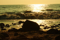 Vänd av tidvattnet Royaltyfri Fotografi