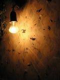 Vänd på elektrisk lampa Arkivbild
