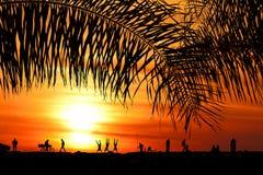 Vändkretsparadis på den orange solnedgången royaltyfri bild