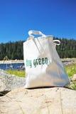 vänlig shopping för påse ekologiskt Arkivbilder
