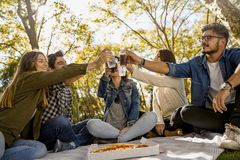 Vänmakin en picknick royaltyfri fotografi