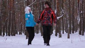 Vänner man och kvinna går vidare den snöig vägen i parkerar och skrattar Spendera tid tillsammans gå på på frostig dag Familjen g stock video