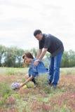 Vänner man, och kvinnan går på fält med röda blommor Royaltyfri Bild