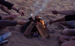 Vänner på en lös strand tände en brasa och småfiskmarshmallower Fotografering för Bildbyråer