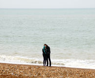 Vänner på stranden royaltyfri bild