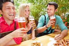 Vänner som dricker öl i trädgård Arkivfoto