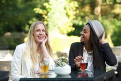 Vänner som dricker Tea Royaltyfria Foton