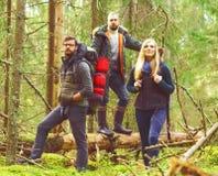 Vänner som går i skog och tycker om en bra höstdag Läger, Arkivfoto