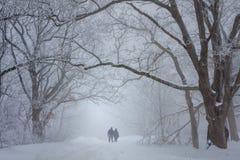 Vänner som går i snön royaltyfria bilder