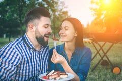 Vänner som gör grillfesten och har lunch i naturen Koppla ihop att ha gyckel, medan äta och dricka på en lycklig pic-nic - arkivfoton