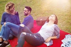 Vänner som har en picknick och tycker om solen Royaltyfri Bild