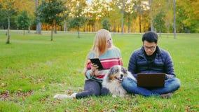 Vänner som kopplar av på gräsmattan i parkera Med dem använder hunden, mannen en bärbar dator arkivfilmer