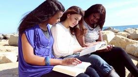 Vänner som läser bibeln på stranden lager videofilmer