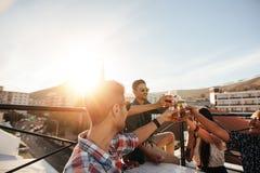 Vänner som rostar drinkar på takpartiet Fotografering för Bildbyråer