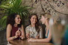 Vänner som tycker om drinkar Arkivbilder