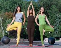 Vänner som utomhus tycker om avslappnande yoga i parkera arkivbilder