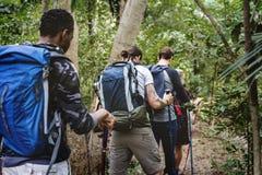 Vänner ut i skogen för trekking royaltyfri foto