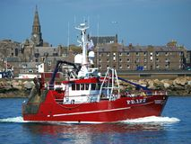Vänskap II PD177 för fiskeskyttel royaltyfria bilder