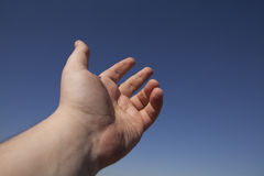 Vänster mänsklig hand Arkivfoton