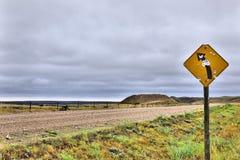 vänster vänd Fotografering för Bildbyråer