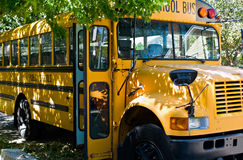 vänta för bussskola Arkivbild
