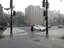 Vänta i regnet i Washington DC royaltyfri fotografi