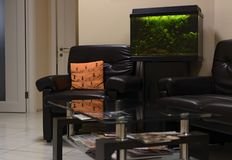 Väntande rum med akvarium- och exponeringsglaskaffetabellen nära aquaen Fotografering för Bildbyråer