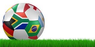 värld 2010 för fotboll för bollkoppgräs Arkivbild