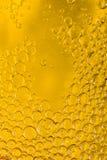 Värld av bubblor arkivfoton