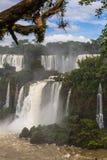 Värld av vattenfall Arkivfoton