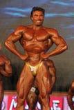 värld för bodybuildingmästerskapwabba Royaltyfria Foton
