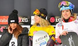 värld för snowboard för damtoalett för korskoppfis royaltyfri bild