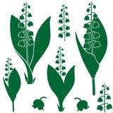 värld för vildmark för dal för liljanaturryss stock illustrationer
