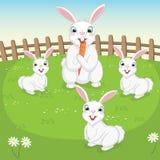Vektorillustration av gulliga kaniner Royaltyfria Foton