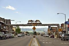 Världens den största Elkhorn bågen Arkivfoto