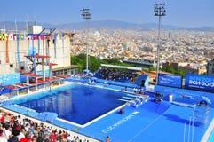 VärldsAquaticsmästerskap 2013, i Barcelona, Spanien Royaltyfri Bild