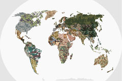 Världskarta - skog, grön kamouflagemodell Royaltyfri Foto