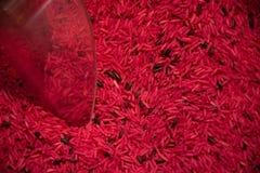 Världsmat, röd ristyp, makrofoto med flyg- textur arkivfoton