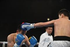 Världsserie av boxning: Ukraina Otamans vs det ryska boxninglaget Fotografering för Bildbyråer