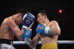 Världsserie av boxning: Ukraina Otamans vs det ryska boxninglaget Arkivbilder
