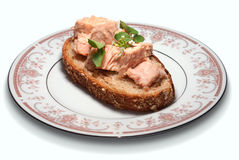 Väsentligt bröd med tonfisk Royaltyfri Fotografi